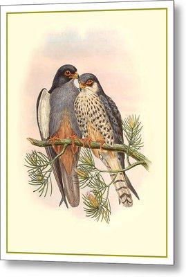 John Gould Birds Metal Print by Gary Grayson