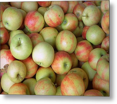 Jonagold Apples Metal Print by Joseph Skompski
