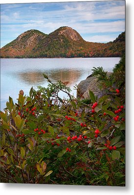 Jordan Pond With Berries Metal Print