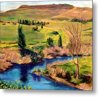 Jordan River In Israel Metal Print by Hannah Baruchi
