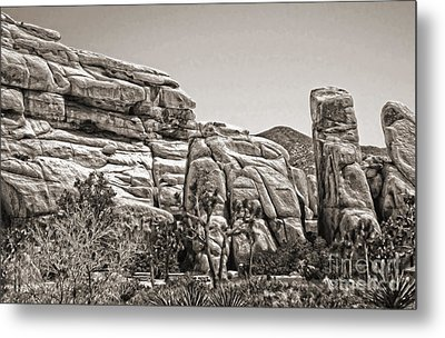 Joshua Tree - 11 Metal Print by Gregory Dyer