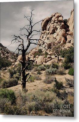 Joshua Tree - 16 Metal Print by Gregory Dyer