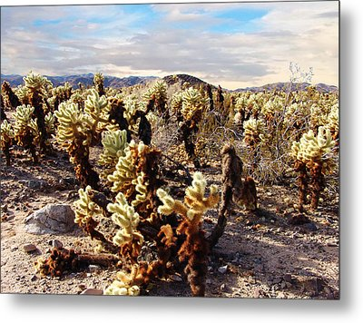 Joshua Tree National Park 3 Metal Print by Glenn McCarthy Art and Photography