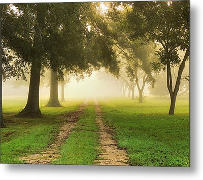 Journey Into Fall Metal Print