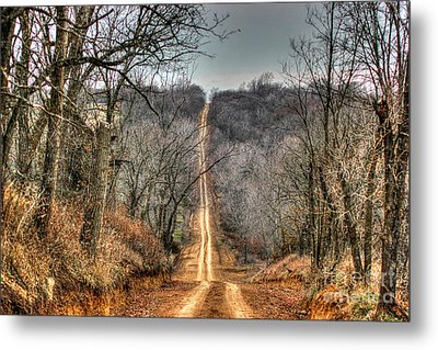 Journey Metal Print by Thomas Danilovich