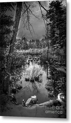 Journey To Hope Metal Print by Sue OConnor