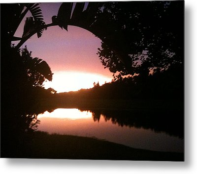 July Florida Sunset Metal Print by Shelley Overton