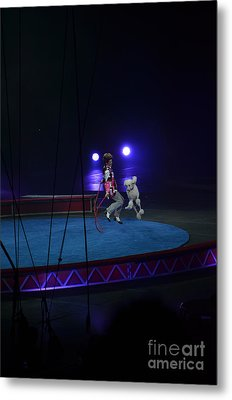 Metal Print featuring the photograph Jumprope With Fido by Robert Meanor