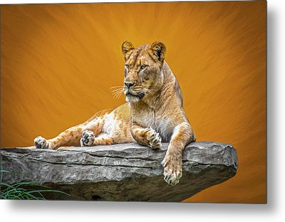 Jungle Queen Metal Print by Marion Johnson