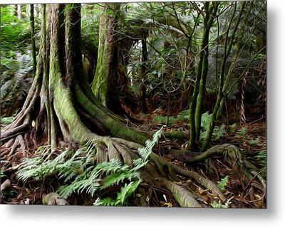 Jungle Trunks1 Metal Print by Les Cunliffe
