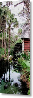 Jungle Water 2 Metal Print by Will Boutin Photos
