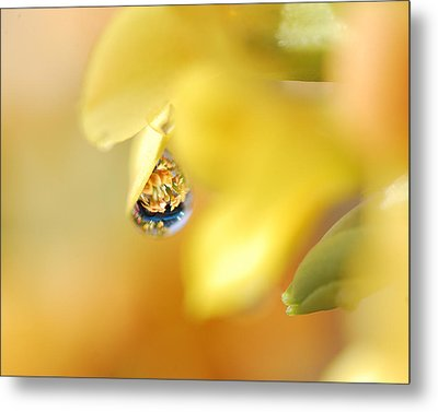 Just A Drop Of Spring Metal Print