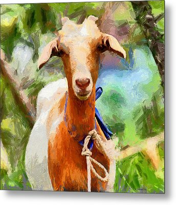Just A Goat Metal Print