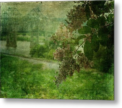 Just A Peek In Green Metal Print by Terry Eve Tanner