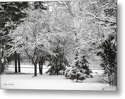 Just After A Snowfall Metal Print by Mary Machare