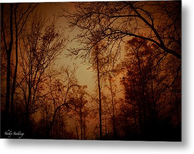 Metal Print featuring the photograph Just After Sunset by Shelly Stallings
