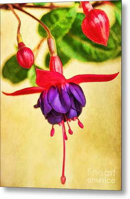 Just Hanging Around Metal Print by Peggy Hughes