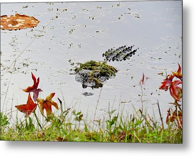 Metal Print featuring the photograph Just Hanging Out by Cynthia Guinn