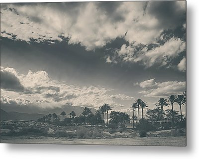 Just Like You Said It Would Be Metal Print by Laurie Search