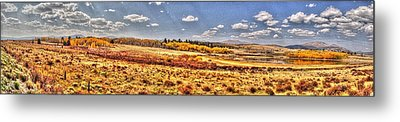 Just North Of Fairplay Colorado Metal Print by Lanita Williams