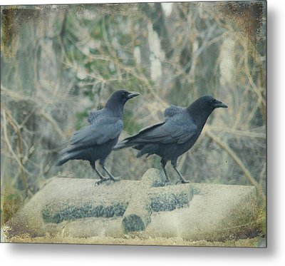 Just The Two Of Us Metal Print by Gothicrow Images