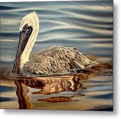 Juvenile Pelican Metal Print by Phyllis Beiser