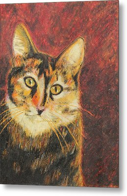 Metal Print featuring the painting Kaco by Jeanne Fischer