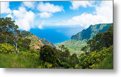 Kalalau Valley  Metal Print by Adam Pender