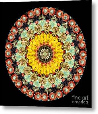 Kaleidoscope Ernst Haeckl Sea Life Series Metal Print by Amy Cicconi
