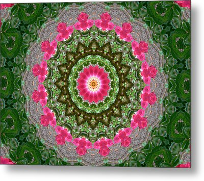 Metal Print featuring the photograph Kaleidoscope Roses In Pink And Green by MM Anderson
