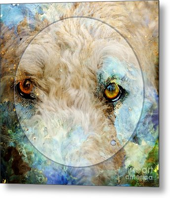 Kaliedoscope Eyes Metal Print by Judy Wood