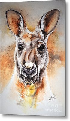 Kangaroo Big Red Metal Print by Sandra Phryce-Jones