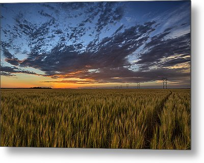 Kansas Color Metal Print by Thomas Zimmerman