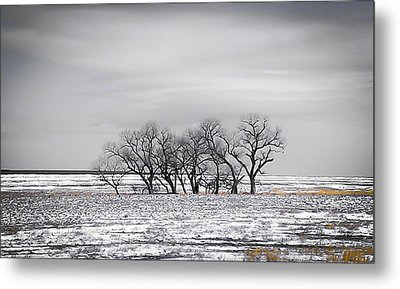 Kansas Snow Metal Print