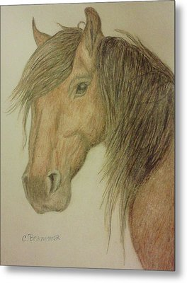 Kathy's Horse Metal Print by Christy Saunders Church