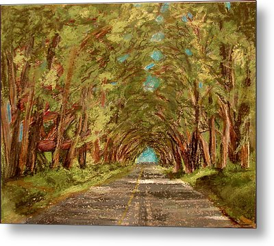 Kauiai Tunnel Of Trees Metal Print