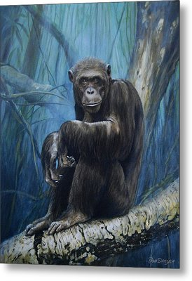 Keeper Of The Congo Metal Print by Rob Dreyer