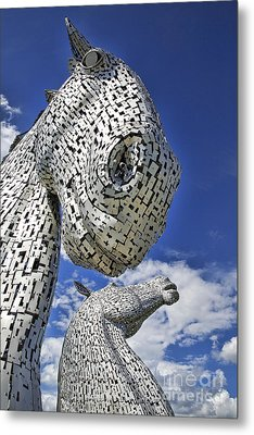 Metal Print featuring the photograph Kelpies by Craig B