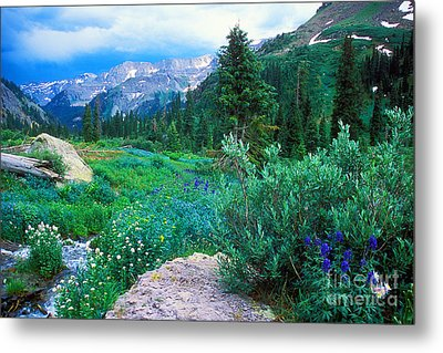 Kennebec Pass Metal Print