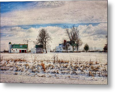 Kentucky Snow Day Metal Print by Darren Fisher