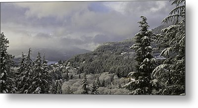 Metal Print featuring the pyrography Ketchikan Alaska After A Small Snow. by Timothy Latta