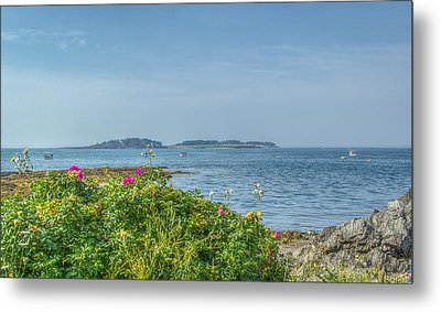 Metal Print featuring the photograph Kettle Cove by Jane Luxton