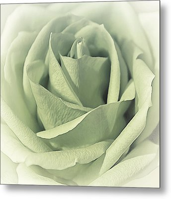 Key Lime Souffle Metal Print