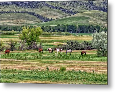 K G Ranch Metal Print by Michael Pickett