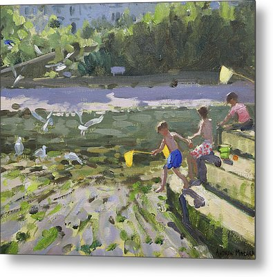 Kids And Seagulls Metal Print by Andrew Macara