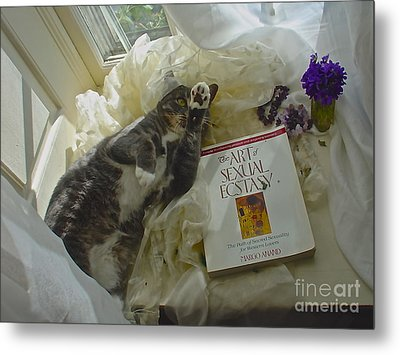 Metal Print featuring the photograph Kiki Kinky by Delona Seserman