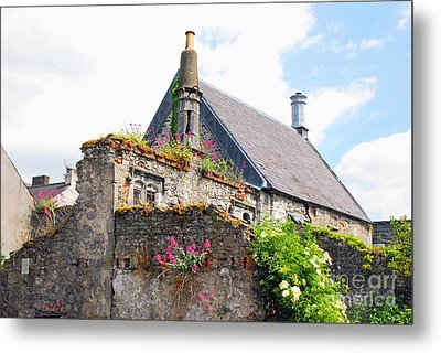 Metal Print featuring the photograph Kilkenny House by Mary Carol Story
