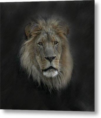 King Of Beasts Portrait Metal Print