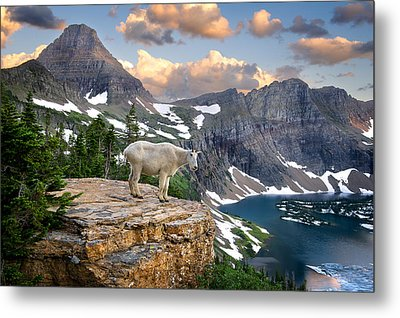 King Of The Mountains Metal Print by Bernard Chen