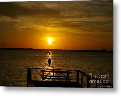 Metal Print featuring the photograph King Of The Pier by Tannis  Baldwin